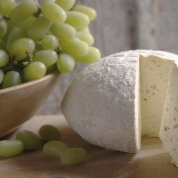 sharpham rustic cheese